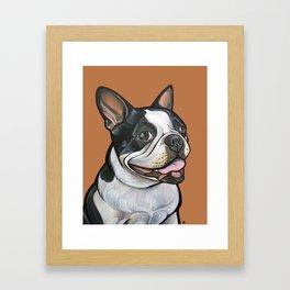 Snoopy the Boston Terrier Framed Art Print
