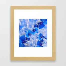 Orchids Blue Framed Art Print