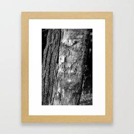 Chopped up  Framed Art Print