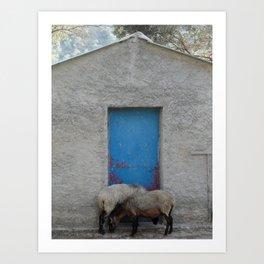 Sheep to Door Art Print