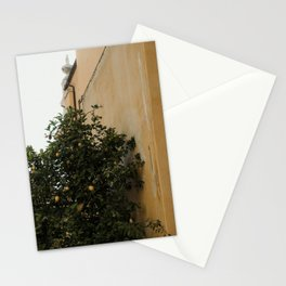 Yellow wall and lemon tree | Architecture in Toscane, Italy| Colorful travel photography Stationery Cards