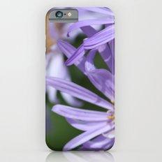 Daises Everywhere Slim Case iPhone 6s