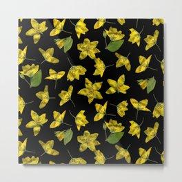 Yellow Loosestrife Metal Print