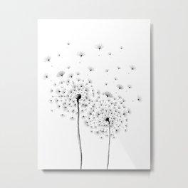 Two Dandelion Metal Print