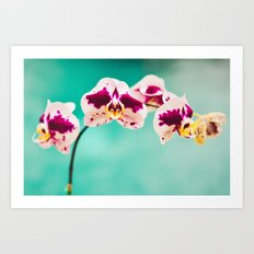 Orchids for an office lobby Art Print