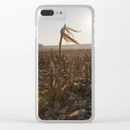 one long corn stalk Clear iPhone Case