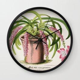 Flower oerides affine roseum Wall Clock