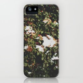 linz 11 iPhone Case