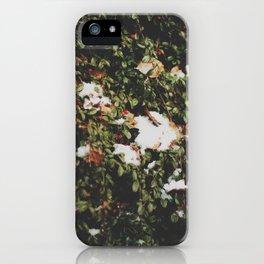 linz 11 iPhone Case