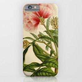 Flower inga ferrucinea7 iPhone Case