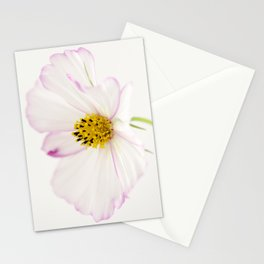Sensation Cosmos White Bloom Stationery Cards