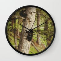 climbing Wall Clocks featuring Climbing Cubs by Kevin Russ