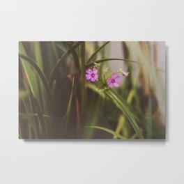 trebol flowers Metal Print