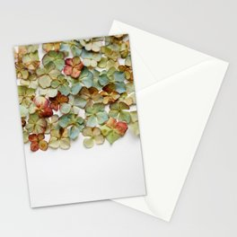 Hydrangea Petals no. 2 Stationery Cards