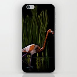 59 - Kerala flamingo iPhone Skin
