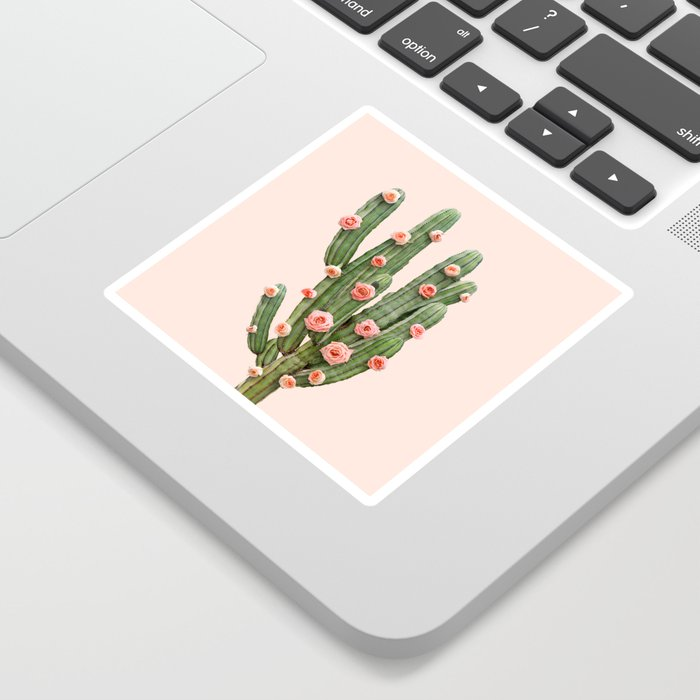 CACTUS AND ROSES Sticker