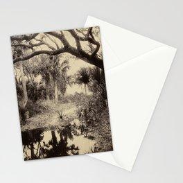 Live Oaks and Palmetto, Everglades, Florida, Vintage Stationery Cards
