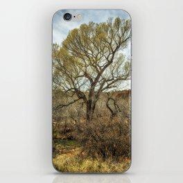 Cottonwood by Oak Creek iPhone Skin