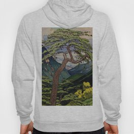 The Downwards Climbing Hoody