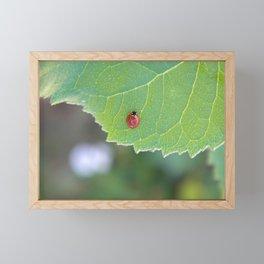 Ladybug friend Framed Mini Art Print