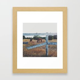 Evening Horses Framed Art Print