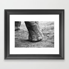 The Elephant Sanctuary 01 Framed Art Print