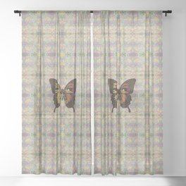 Butterfly Variation 03 Sheer Curtain