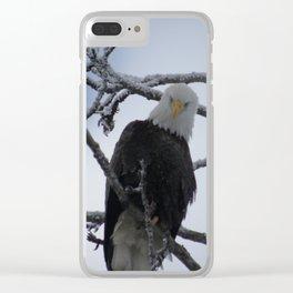 Bald Eagle at 12 Below -- Soldotna, Alaska Clear iPhone Case