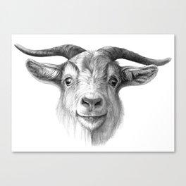 Curious Goat G124 Canvas Print