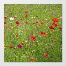 summer meadow IX Canvas Print