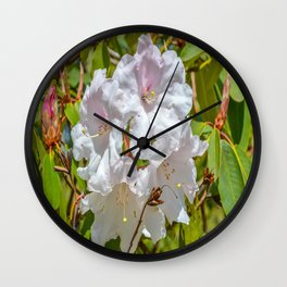 The Lost Gardens of Heligan - White Rhododendron Wall Clock