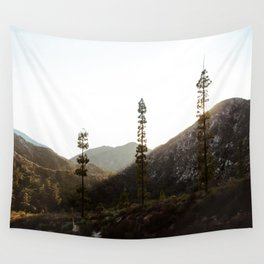 sunset in angeles crest forest Wall Tapestry
