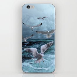 Gulls' Banquet iPhone Skin