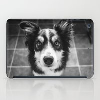 border collie iPad Cases featuring Tri-coloured border collie. by liamgrantfoto
