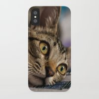 nori iPhone & iPod Cases featuring Nori by Yvo Photography