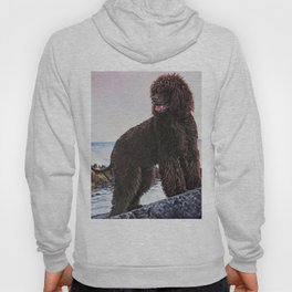 Irish Water Spaniel dog art from an original painting by L.A.Shepard Hoody