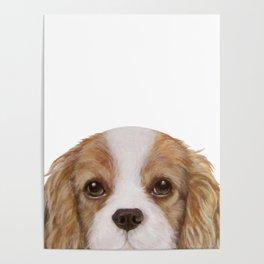Cavalier King Charles Spaniel Dog illustration original painting print Poster