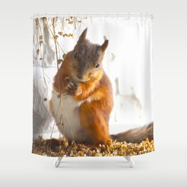 Lovely Mommy Squirrel Portrait Shower Curtain