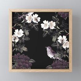 Blackberry Spring Garden Night - Birds and Bees on Black Framed Mini Art Print