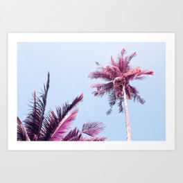 Pink Coco Palm Trees on Blue Sky Tropical Summer Poster Art Print