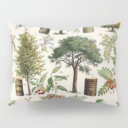 Adolphe Millot - Arbres B - French vintage botanical poster Pillow Sham