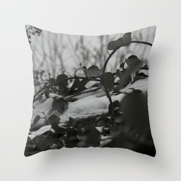Snow covered ivy Throw Pillow
