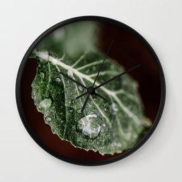 Collards Wall Clock