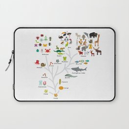 Evolution in biology, scheme evolution of animals on white. children's education back to scool Laptop Sleeve
