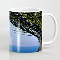 palm tree Mugs featuring Palm Tree by M. Gold Photography
