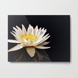 A Moment for Reflection with a Waterlily Metal Print