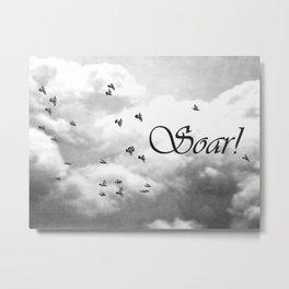 Soar Birds in Flight A610BW Metal Print