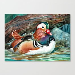 Watercolor Duck Painting Canvas Print