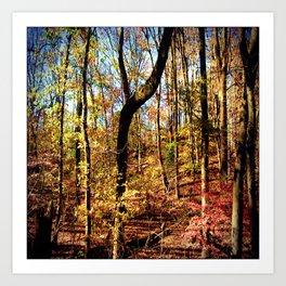 Scenes Along The Cooper River Art Print