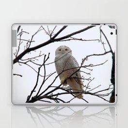 Snowy Owl in the Treetop Laptop & iPad Skin